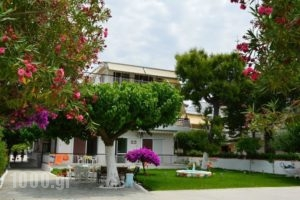 Akrogiali_accommodation_in_Apartment_Central Greece_Evia_Amaranthos
