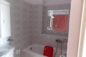 Afroditi_best deals_Apartment_Macedonia_Pieria_Paralia Katerinis
