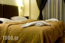 Alkistis Hotel in Portaria, Magnesia, Thessaly