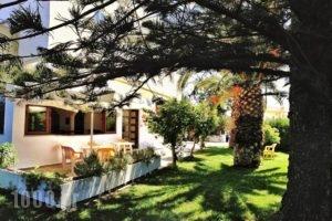 Mastorakis Hotel and Studios_holidays_in_Hotel_Crete_Heraklion_Chersonisos