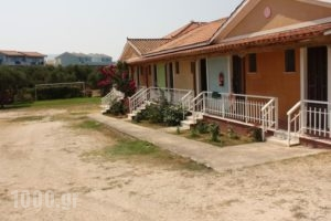 Jimmys Studios_best prices_in_Hotel_Ionian Islands_Zakinthos_Laganas
