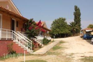 Jimmys Studios_best deals_Hotel_Ionian Islands_Zakinthos_Laganas