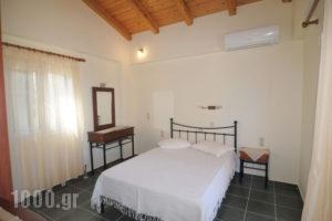 Harmony_holidays_in_Apartment_Ionian Islands_Lefkada_Lefkada Chora