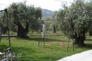 Xanthoula Studios_holidays_in_Hotel_Aegean Islands_Thasos_Thasos Chora