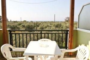 Xanthoula Studios_accommodation_in_Hotel_Aegean Islands_Thasos_Thasos Chora