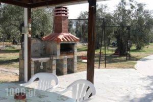Xanthoula Studios_travel_packages_in_Aegean Islands_Thasos_Thasos Chora