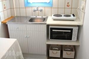 Ilios of Paros_holidays_in_Apartment_Cyclades Islands_Paros_Paros Rest Areas