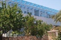 Ikion Studios in Alonnisos Rest Areas, Alonnisos, Sporades Islands