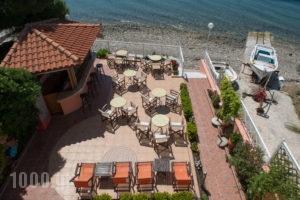 Porto Xronia Apartments_best prices_in_Apartment_Central Greece_Evia_Limni