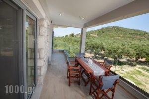 Zante Suites_best deals_Room_Ionian Islands_Zakinthos_Alikanas