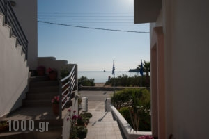 Studios Alcioni_holidays_in_Apartment_Cyclades Islands_Andros_Andros Chora