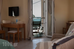 Studios Alcioni_best prices_in_Apartment_Cyclades Islands_Andros_Andros Chora