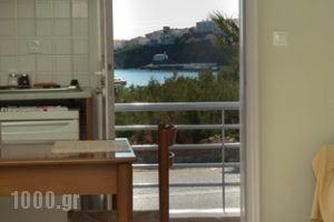 Studios Alcioni_lowest prices_in_Apartment_Cyclades Islands_Andros_Andros Chora