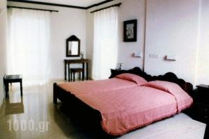 Blue Paradise Studios_best deals_Apartment_Ionian Islands_Kefalonia_Argostoli
