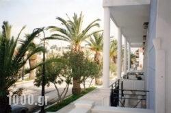 Blue Paradise Studios in Argostoli, Kefalonia, Ionian Islands