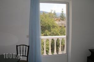 Blue Paradise Studios_lowest prices_in_Apartment_Ionian Islands_Kefalonia_Argostoli