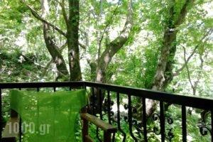 Tasoula Parselia_lowest prices_in_Hotel_Aegean Islands_Samothraki_Therma