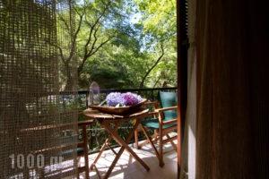 Tasoula Parselia_holidays_in_Hotel_Aegean Islands_Samothraki_Therma