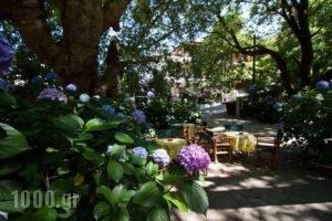 Tasoula Parselia_travel_packages_in_Aegean Islands_Samothraki_Therma
