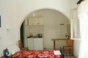 Windmill Naxos_holidays_in_Hotel_Cyclades Islands_Naxos_Naxos chora