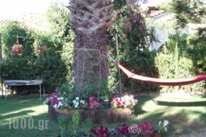 Villa Xenos_travel_packages_in_Ionian Islands_Zakinthos_Kalamaki