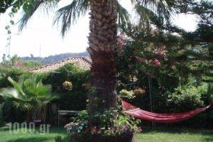 Villa Xenos_best prices_in_Villa_Ionian Islands_Zakinthos_Kalamaki