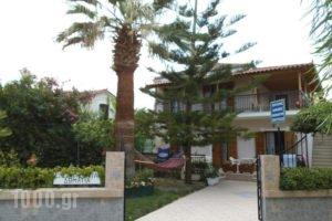 Villa Xenos_accommodation_in_Villa_Ionian Islands_Zakinthos_Kalamaki