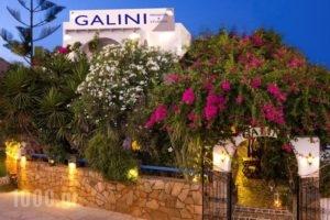 Galini Pension_accommodation_in_Hotel_Cyclades Islands_Ios_Ios Chora