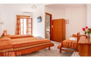 Village Twins_accommodation_in_Hotel_Cyclades Islands_Ios_Ios Chora