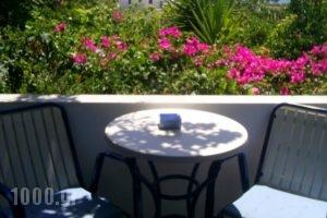 Galini Pension_holidays_in_Hotel_Cyclades Islands_Ios_Ios Chora