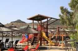 Stella in Pilio Area, Magnesia, Thessaly