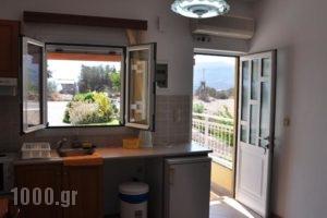 Lagos Studios & Apartments_holidays_in_Apartment_Crete_Lasithi_Sitia