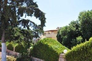 Lagos Studios & Apartments_best prices_in_Apartment_Crete_Lasithi_Sitia
