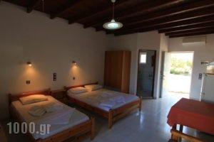 Ledakis Studios_best prices_in_Hotel_Crete_Chania_Sfakia