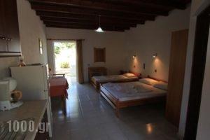 Ledakis Studios_holidays_in_Hotel_Crete_Chania_Sfakia