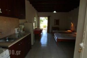 Ledakis Studios_lowest prices_in_Hotel_Crete_Chania_Sfakia