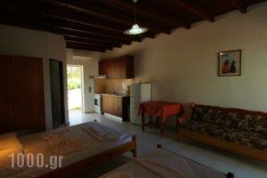 Ledakis Studios_best deals_Hotel_Crete_Chania_Sfakia