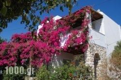 Kelly'S in Antiparos Chora, Antiparos, Cyclades Islands