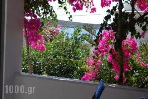 Kelly'S_travel_packages_in_Cyclades Islands_Antiparos_Antiparos Chora
