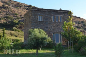 Onar Andros_accommodation_in_Room_Cyclades Islands_Andros_Andros Chora