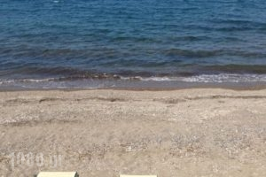 Reef_accommodation_in_Hotel_Aegean Islands_Lesvos_Petra