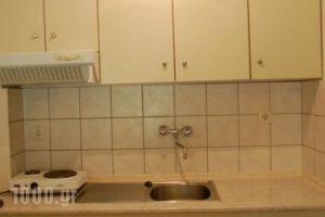 Villa Mandani_travel_packages_in_Macedonia_Pieria_Paralia Skotinas