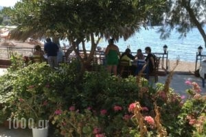 Klimataria_accommodation_in_Hotel_Aegean Islands_Lesvos_Anaxos