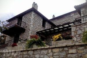 Erasmion_accommodation_in_Apartment_Peloponesse_Arcadia_Doliana