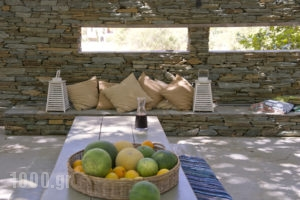 Onar Andros_lowest prices_in_Room_Cyclades Islands_Andros_Andros Chora