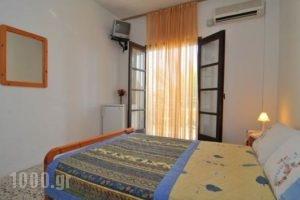 Pension Marina_holidays_in_Hotel_Aegean Islands_Thassos_Thassos Chora