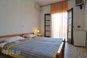 Pension Marina_best deals_Hotel_Aegean Islands_Thassos_Thassos Chora