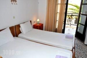 Pension Marina_lowest prices_in_Hotel_Aegean Islands_Thassos_Thassos Chora
