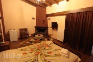 Hotel Teloneio_holidays_in_Hotel_Epirus_Preveza_Preveza City