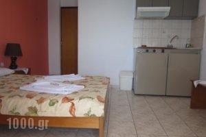 Kiknos Studios_best prices_in_Hotel_Crete_Heraklion_Tymbaki